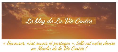 Visuel du blog du site Site web La Vie Contée : Savoir et partager