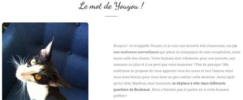 Visuel : Cyclo pet's - conciergerie animale bordelaise - pet sitting - le mot de Youyou