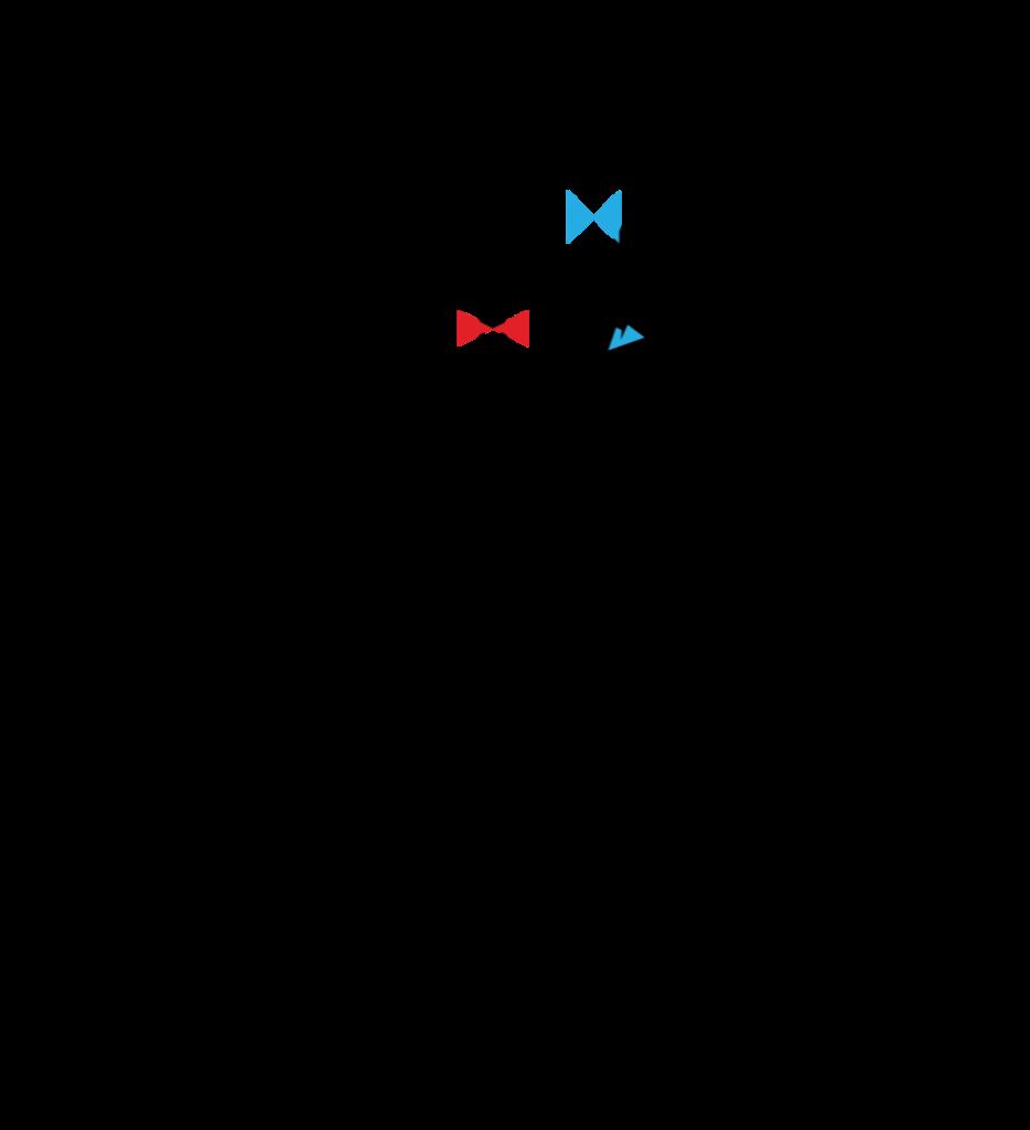 Logo Cyclo Pet's - Conciergerie animale - Bordeaux